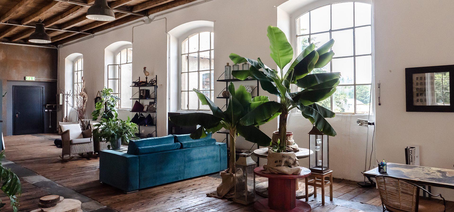 showroom-interior-motta-design